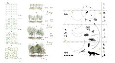 Quick And Easy Landscaping On A Budget - House Garden Landscape Landscape Architecture Drawing, Landscape Concept, Eco Architecture, Architecture Graphics, Landscape Drawings, Landscape Diagram, Urban Landscape, Landscape Design, Urban Design Diagram