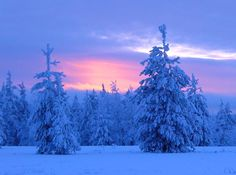 Blue moment in Lapland in Finland (at the arctic circle line in Rovaniemi) Winter Szenen, Winter Magic, Travel Images, Travel Photos, Santa Claus Village, Photo Voyage, Finland Travel, Arctic Circle, Winter Beauty
