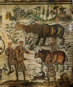 A rhinoceros is captured. Detail of the Big Game Hunt, mosaic (3rd-4th VE) in the ambulatory of the Villa del Casale, Piazza Armerina, Sicily, Italy.   Villa Romana del Casale, Piazza Armerina, Italy