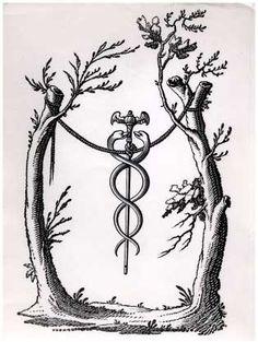 Caduceus - Caduceus, the wand of Mercury - Occultopedia, the ...