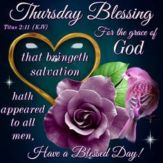 Thursday Blessing, Have A Blessed Day good morning thursday thursday quotes thursday blessings thursday blessing images good morning thursdy Funny Thursday Images, Good Morning Thursday Images, Happy Thursday Quotes, Thursday Morning, Thursday Prayer, Wednesday, Monday Blessings, Morning Blessings, Morning Prayers