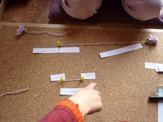 Montessori avec les 6-12 ans: Géométrie: travail sur la droite et ses parties