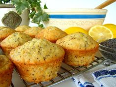 Seed Muffins These moist and delicious muffins are sure to be a hit at your next ladies brunch or tea!These moist and delicious muffins are sure to be a hit at your next ladies brunch or tea! Zucchini Muffins, Muffins Blueberry, Lemon Poppyseed Muffins, Lemon Muffins, Orange Muffins, Mini Muffins, Breakfast Muffins, Breakfast Recipes, Breakfast Ideas