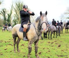 Comanche hunting Dec 2019. #loveirishhorses #horsesinireland #horseforsale Cross Country Jumps, Beach Rides, Horses For Sale, Day Off, Equestrian, Ireland, Hunting, Animals, Animaux