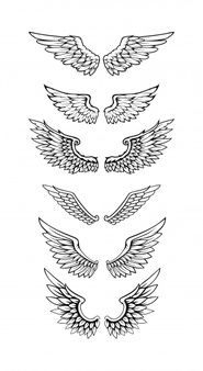 Illustration Of Wings Collection Set Hand Tattoos, Bird Hand Tattoo, Body Art Tattoos, New Tattoos, Small Tattoos, Sleeve Tattoos, Tattoos For Guys, Tatoos, Wing Neck Tattoo