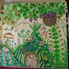 Take a peek at this great artwork on Johanna Basford's Colouring Gallery! Adult Coloring, Coloring Books, Johanna Basford Coloring Book, Outline Drawings, Color Club, Polychromos, Prismacolor, Colored Pencils, Aster
