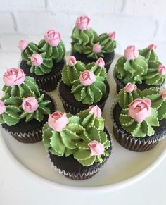 Oh my cupcakes! These are beautiful Oh my cupcakes! - Oh my cupcakes! These are beautiful Oh my cupcakes! These are beautiful Best Picture For cactus ja - Kaktus Cupcakes, Succulent Cupcakes, Cupcakes Flores, Garden Cupcakes, Beautiful Cakes, Amazing Cakes, Cactus Cake, Cactus Cactus, Indoor Cactus