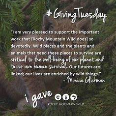 Will you join Monica and give a dollar or dime, or some of your time to help us protect the wild things in our region? http://rockymountainwild.org/donate/giving #GivingTuesday