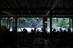 숲속의 정워 내부에서 본 뒷 마당..20130623