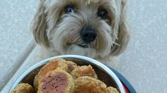 A wonderful blend of your dog's favorite tastes all in one treat!
