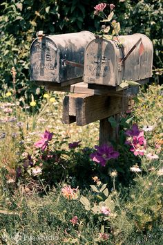 Looking for mailbox ideas for your landscape? Here are creative mailbox landscaping ideas from other materials: vintage, stone, wood. Country Mailbox, Old Mailbox, Vintage Mailbox, Mailbox Post, Rural Mailbox Ideas, Country Charm, Country Life, Country Living, Country Style