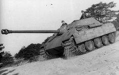 Panzerjäger für 8,8 cm Pa.K. 43/3 auf Fgst. Panther (Sd.Kfz. 173)  Un Jagdpanther de début de production du schwere Panzerjäger-Abteilung 654 sur les berges de la rivière Mars, sud-ouest de la France.