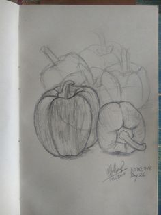 The fading peppers. Everyday drawing challenge in less than 30min. Day 26