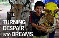 Heifer International   Charity Ending Hunger And Poverty