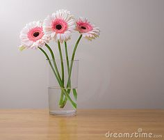 Florist we saw at the bridal fair had a picture of a bouquet with gerber daisies like these. White with pink centers. It looked really classy!
