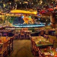Rainforest Café Showdown