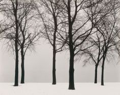 Harry Callahan. Chicago, 1950. Mary L. and Leigh B. Block Endowment.