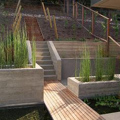 This is *sort of* what I have in mind for the back yard hill...stairs going down with plantings next to them, possibly with a couple of terraced/retaining walls, and a deer fence surrounding.  Our stairs can be another material, though, to save money.