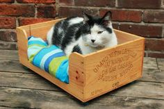 Reclaimed Wine Crate Pet Bed from DomaineDeDoggie