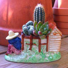 Vintage Planter  Cactus/Succulent