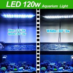 TaoTronics TT-AL01 Aquarium Coral Reef Tank White Blue LED Lamb Grow Light 120W-provide light that have the same effect as natural sunlight and hence offers a very good growing habitat for green aquatic seaweeds corals fish etc by Sunvalleytek. $239.99. Powerful 120W LED Aquarium Light can replace 400W Metal Halide Lamp, save 90% on electricity bills. No need to buy additional expensive cooling system. 2 power cord system: 1 Cord controls the White LEDs and 1 ...