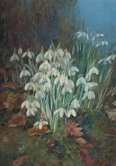 Painting by Katherine Cameron, snowdrops | Tumblr