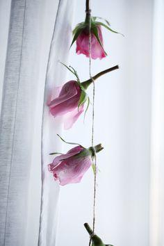 Весной особенно обостряется чувство прекрасного, хочется запаха цветов, цвета, солнца и свежести!  Создать весну дома легко!   http://cherryandberry.ru/blog