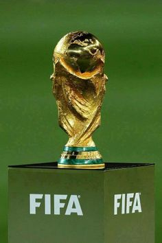 The winning team gets this at the end. - Fifa World Cup Copa Football, Nike Football Boots, Football Fever, World Cup 2014, Fifa World Cup, Spain National Football Team, History Of Soccer, Italy World Cup, Soccer Schedule