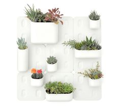 i love succulents, and i love vertical gardens. i might just have to buy this when it's available!
