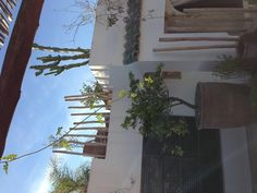 Rooftop terrace, Riad 144, Morocco