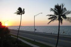11 Florida-Tipps für Fortgeschrittene
