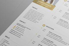 Cv-Resume by Designs Bird on @creativemarket Student Resume Template, Cv Template, Templates, Typography, Lettering, Cover Letter For Resume, Resume Cv, User Guide, Graphic Design