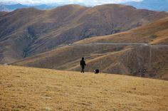 Walking the dog, Lake Yamdrok Tso, Tibet | by iancowe