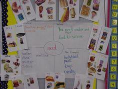 Vocabulary Activitie