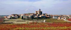 Leza y Navaridas celebran la primera edición de las 'olimpiadas rurales' en Rioja Alavesa
