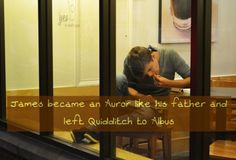 James became an Auror like his father and left Quidditch to Albus