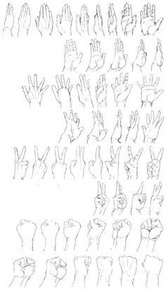 手足の資料(トレス)