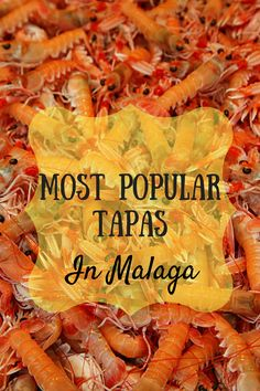 Don't Miss Out On Any Of Malaga's Most Popular Tapas With Our Guide For What To Eat During Your Visit