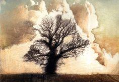Ian MacCulloch artist & printmaker