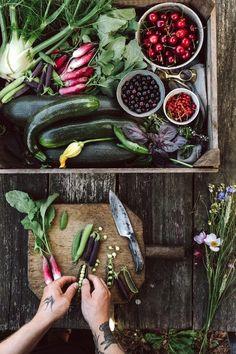 Ideas For Fruit Garden Photography Food Styling Food Styling, Food Photography Styling, Fruit And Veg, Fruits And Vegetables, Planting Vegetables, Fruit Garden, Summer Salads, Organic Recipes, Food Inspiration