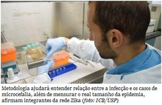 Teste criado na USP permite identificar anticorpos contra o vírus Zika