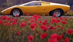 Lamborghini_Countach_LP500_side.jpg 720 × 415 bildepunkter