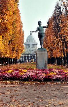 autumn at luxembourg gardens, paris