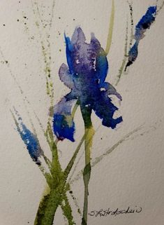 Iris by Sandra Strohschein - Iris Painting - Iris Fine Art Prints and Posters for Sale Watercolor Cards, Watercolor Flowers, Watercolor Paintings, Watercolours, Art Floral, Fine Art Amerika, Iris Art, Iris Painting, Guache