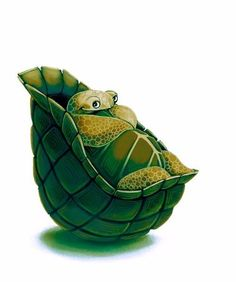 Shy Turtle. Cute artist illustrations. Adorable creatures and critter drawings and digital art. Childrens art and character sketches.