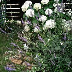 手作りの庭/olivier's garden/RC九州支部/玄関/入り口のインテリア実例 - 2015-06-16 18:31:02 | RoomClip(ルームクリップ)