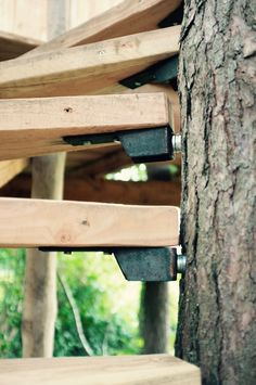 Trap naar boomhut, Treehouse.