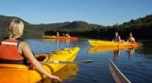 There is so much to do and see in beautiful Narooma in the Eurobodalla Shire on the New South Wales South Coast. Narooma is the ideal place to base yourself at to see them all. South Coast Nsw, Holiday Park, My World, Kayaking, Attraction, Things To Do, Colour, Holidays, Places