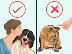 Before bringing a dog into your family it is important to know how to take care of it. You need to provide for its needs, both physical and emotional. This means providing nutritious food, clean drinking water, shelter, and the opportunity...