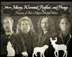 1000+ images about Moony,Wormtail,Padfoot and Prongs on ...